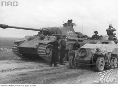 "5th SS-Panzer Division ""Wiking"""